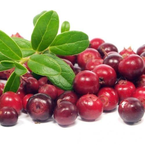 Mellow Cranberry Smoothie Recipes — Dishmaps