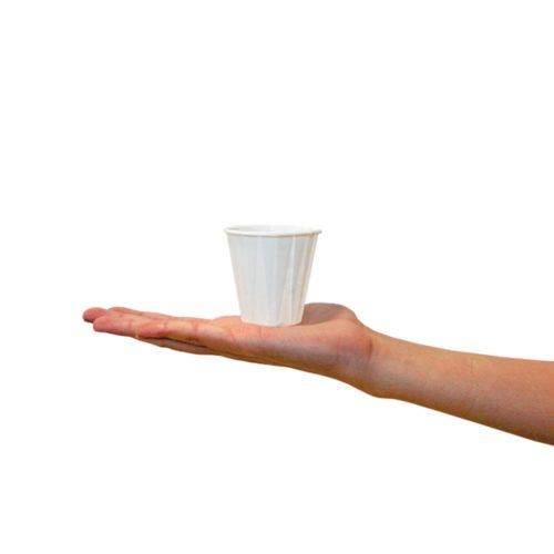 Paper Compostable Cup - 4oz White 2