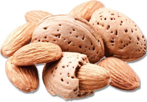 Almond Flavor Concentrate for Frozen Yogurt