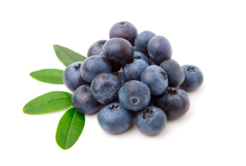 Blueberries Flavor Concentrate for Frozen Yogurt
