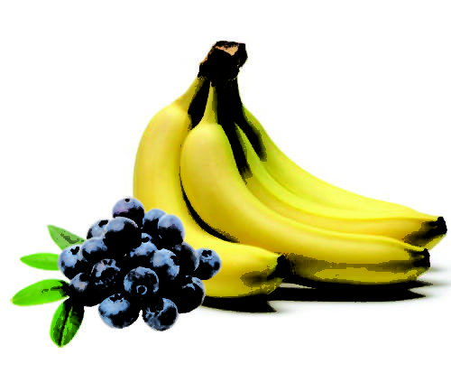 Blueberry Banana Flavor Concentrate for Frozen Yogurt