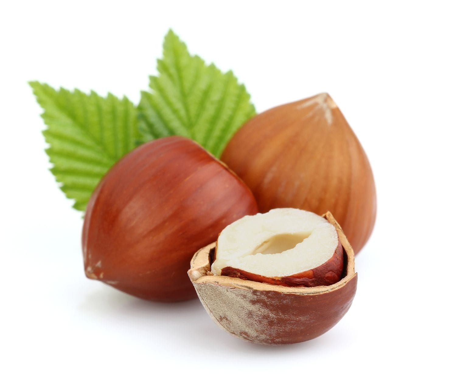 Hazelnut Flavor Concentrate Frocup